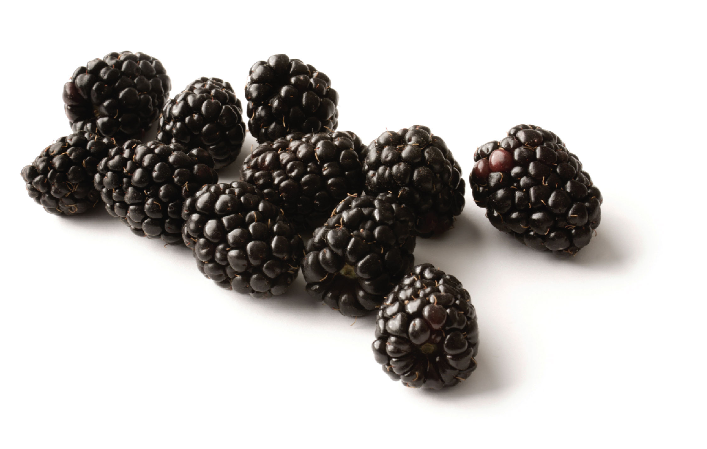 Black Raspberry | The Inquisitive Eater