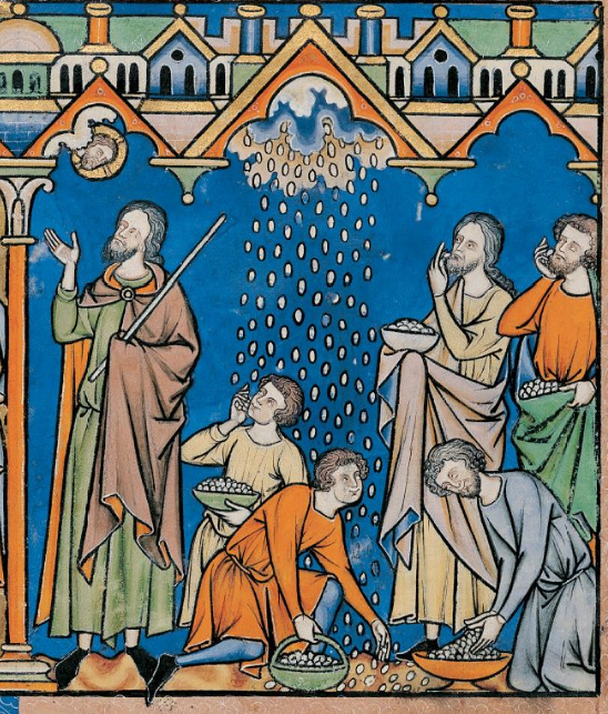 """Manna reigning from heaven on the Israelites,"" Maciejowski Bible, circa 1250. Source: Wikimedia Commons"