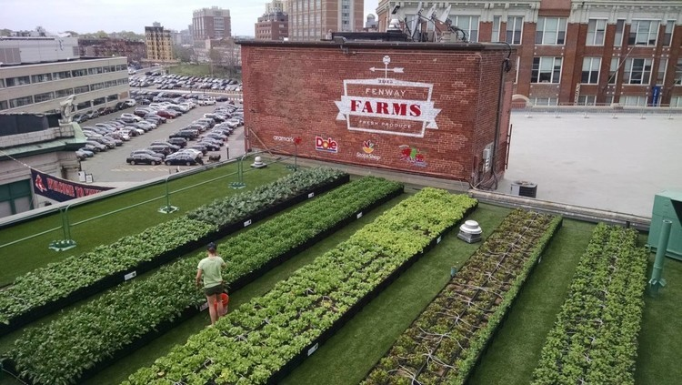 Green City Growers, via Food Tank